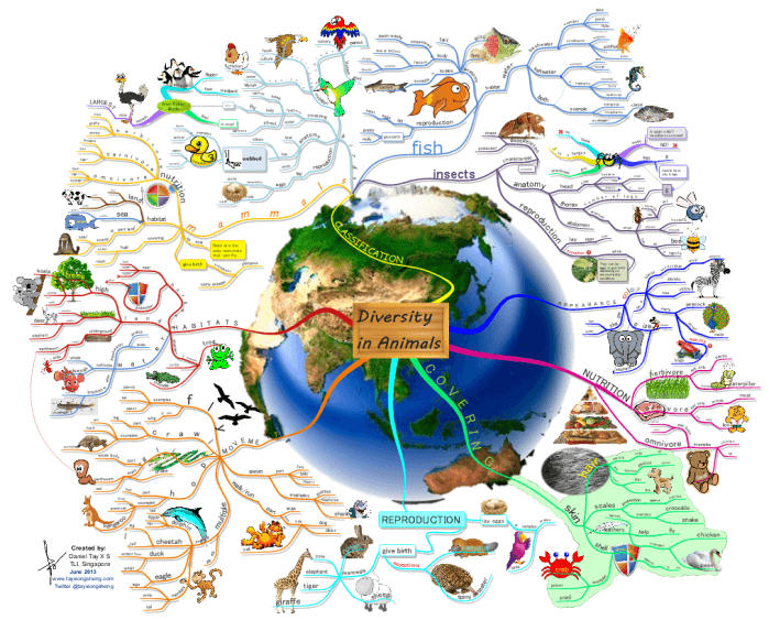 Imindmap Gallery Mind Mapping: Us History Mind Map At Usa Maps